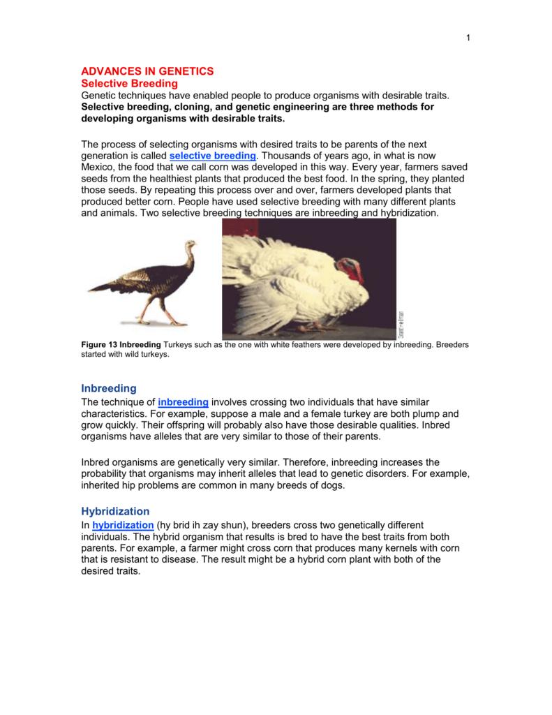 Plant breeding: inbreeding and hybridization 97