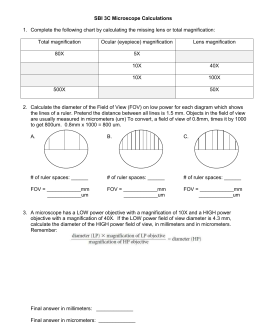 Microscope Calculations Worksheet
