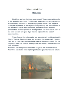 Muck fires are fires that burn underground. They are started (usually