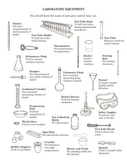 Lab Equipment Uses Worksheet | Free Lab Equipment Uses Worksheet ...