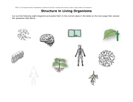 Structure and Function in Living Organisms