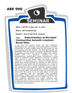 Determination of Microbial Communities beneath Livestock Burial