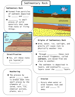 sedimentary-rock-student-notes-2010-1