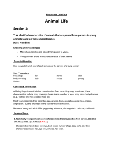 First Grade Unit Four - Animal Life