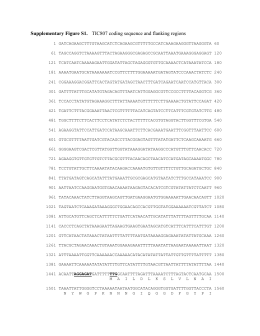Supplementary Figure S1. TIC807 coding sequence and flanking