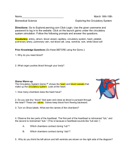Student Exploration: Circulatory System