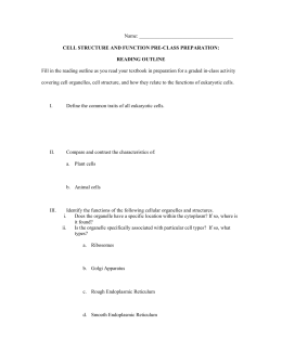 Supplemental File S2. Cell Engineer-Cell structure