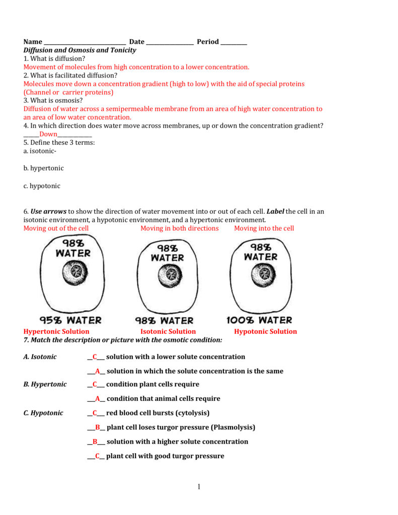 Osmosis Worksheet   Homedressage together with Collection of Worksheet osmosis tonicity key   Download them and try in addition Osmosis And Tonicity Worksheet Answers   Lobo Black as well  further All about Osmosis And Tonicity Khan Academy   kidskunst info further Osmosis Worksheet Luxury Osmosis Worksheet Worksheet Template Gcse additionally Osmosis and diffusion lab potato also  together with osmosis essay essay on surrounding environment essay for economics also Measuring osmosis and hemolysis of red blood cells furthermore Best Osmosis Worksheet Biology Answers   Premium Worksheet further Osmosis and Tonicity Worksheet likewise 23 Elegant Cell Memne and tonicity Worksheet Answers   t honda together with  additionally Gummy Bear Osmosis Lab Answers besides . on osmosis and tonicity worksheet answers