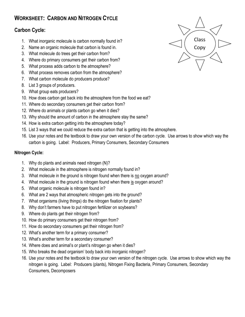 Worksheet Carbon and Nitrogen Cycle – Nutrient Cycle Worksheet