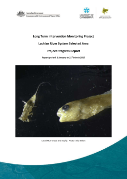 Long Term Intervention Monitoring Project Lachlan River System