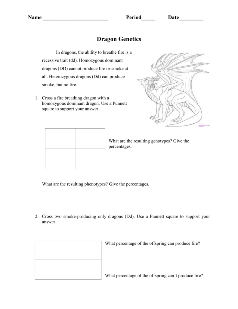 Dragon Genetics Punnett Square Practice – Dragon Genetics Worksheet