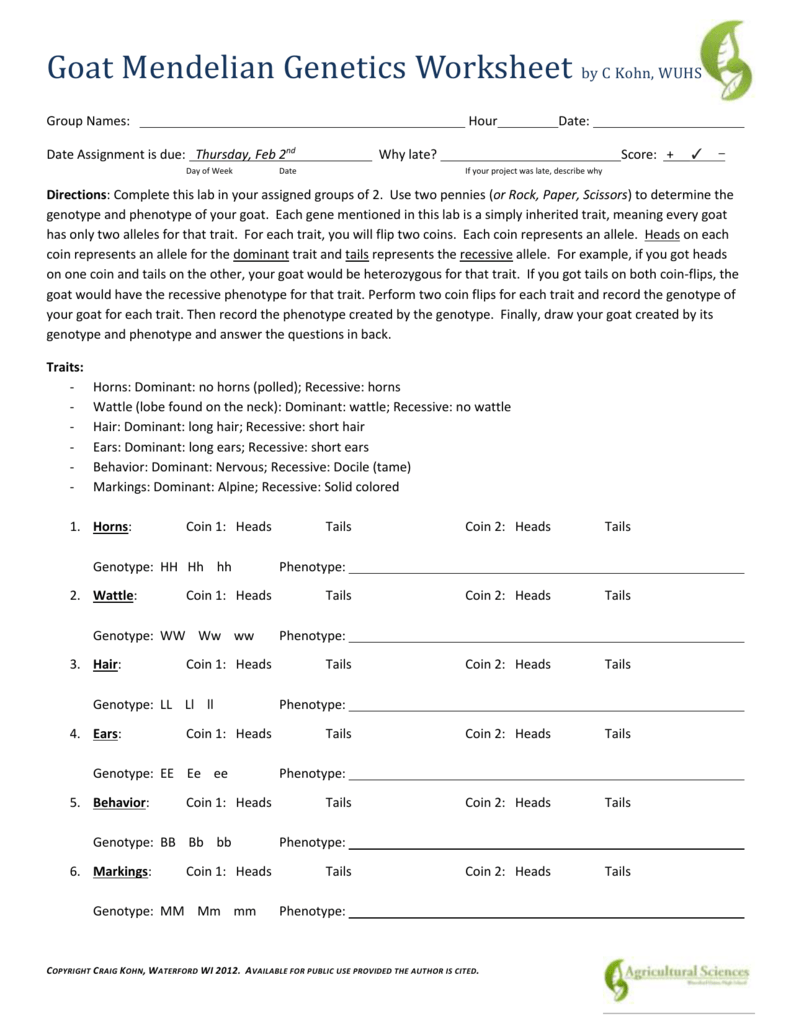worksheet Mendel And Meiosis Worksheet Answers worksheet section 11 3 exploring mendelian genetics answers flashcards table on mendel quizlet
