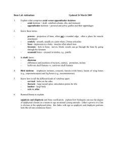 Vertebrate Zoology BIOL 322/Bone Addendum Sheet final 26mar09