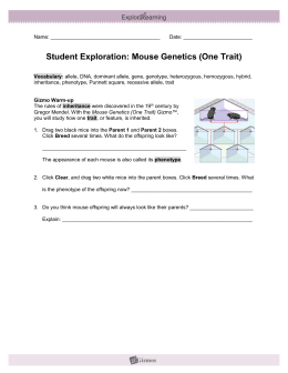 Student Exploration: Mouse Genetics (One Trait)