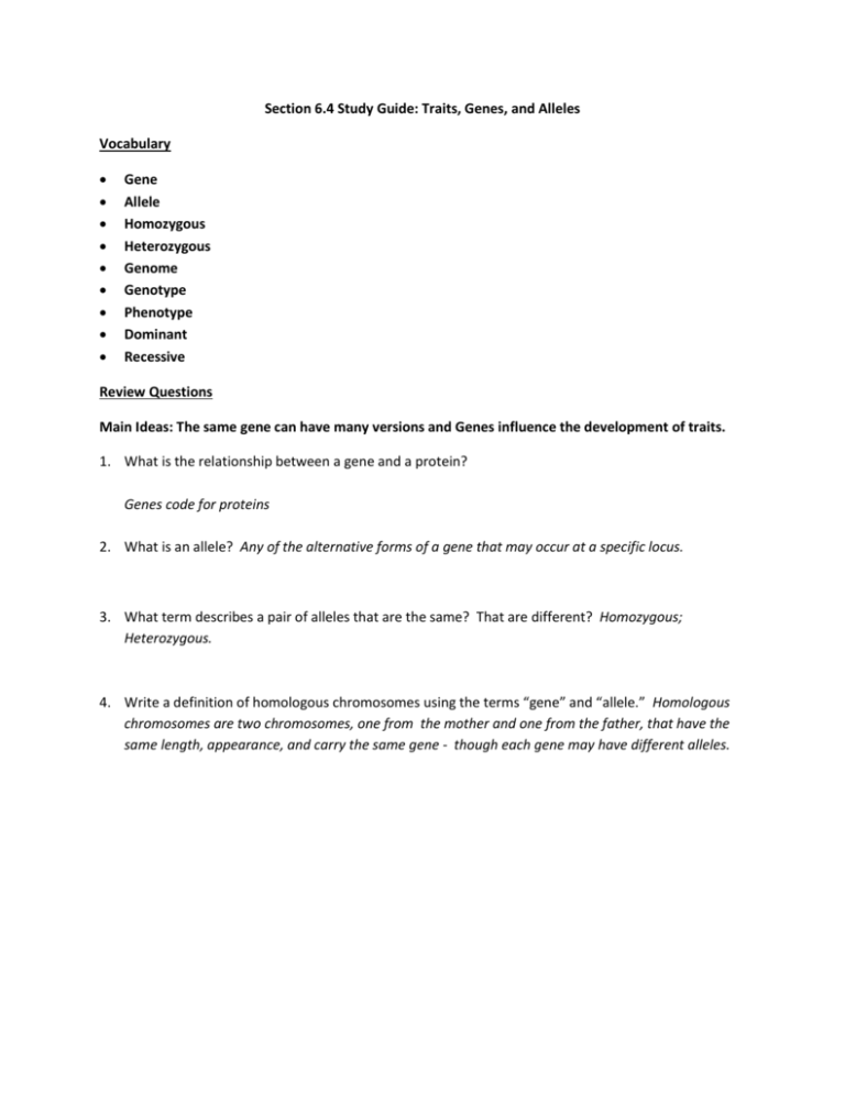 Section 6 4 Study Guide