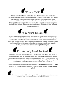 About TNR - Port City Cat Rescue