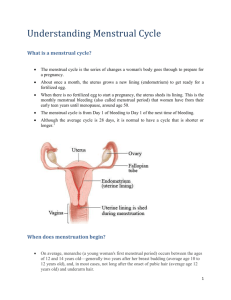 What is a menstrual cycle?