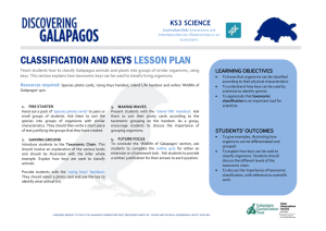1A4 - Classification and Keys MSWord Lesson Plan