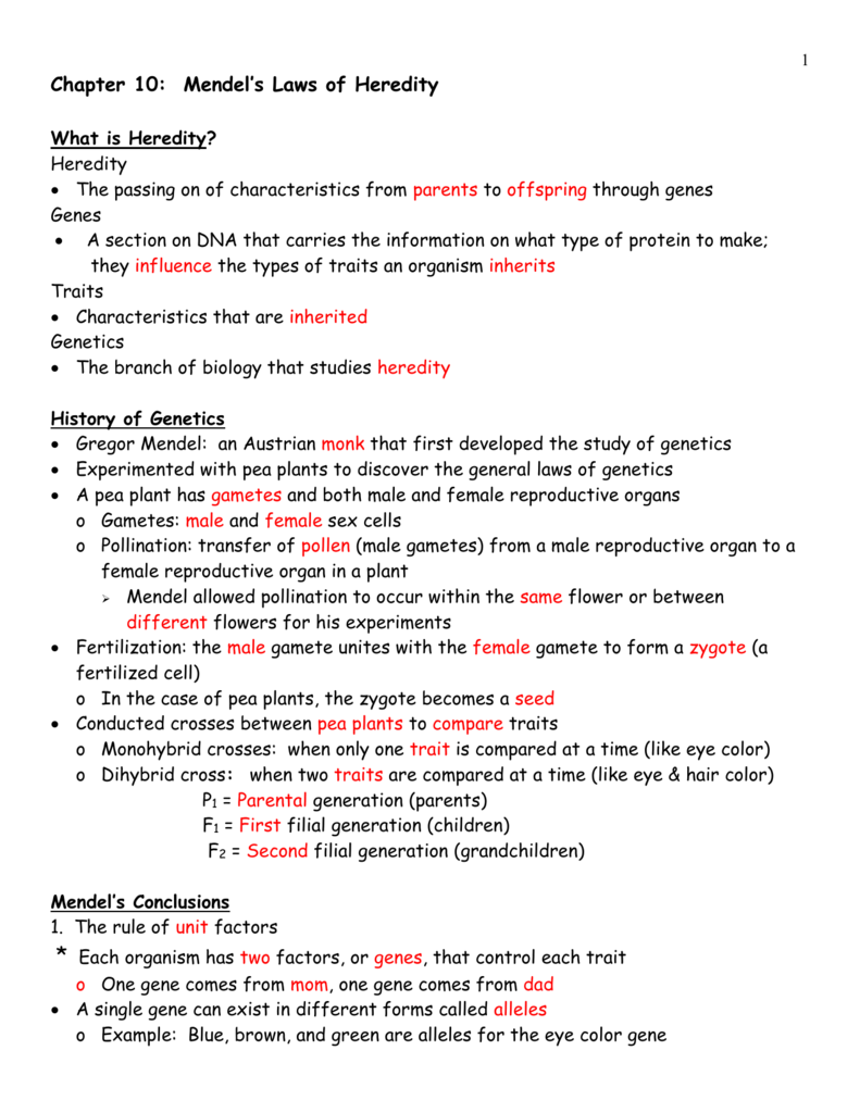 Section 112 From Dna To Protein Worksheet Answers ...