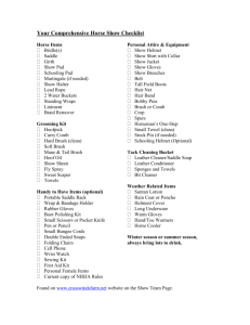 Your Horse Show Checklist