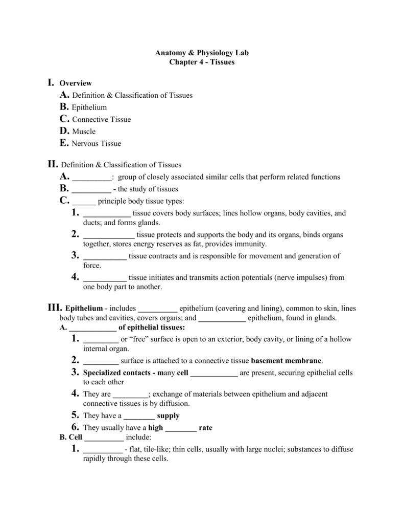Biology 11 - Human Anatomy