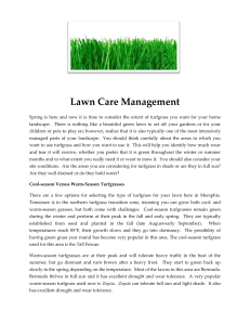 Lawn Care Management - Memphis Area Master Gardeners