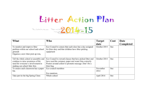 litter action plan2014 ST. MICHAEL