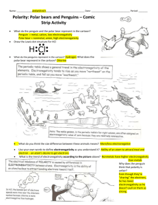 Polarity with Polar Bears - ANSWER KEY