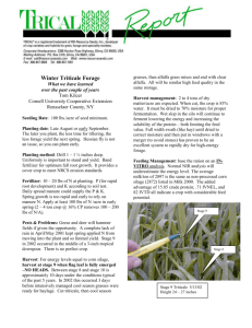 Tom Kilcer: Winter Forage Triticale What We Have Learned