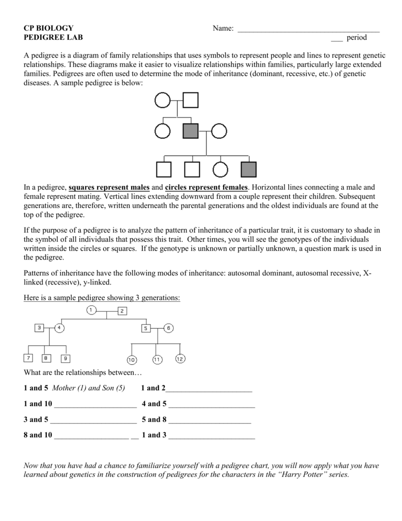 Harry Potter Unit Worksheet Graphing Pets Hp Reading  prehension also Harry Potter Ge ics Lesson 2 by Next Generation Science Clroom additionally  additionally  moreover Pedigree Lab   Brookwood High also Harry Potter Ge ics Worksheet additionally GE IC TRAITS IN HARRY POTTER DOMAIN 3 GE ICS   PDF likewise Harry Potter Printable Worksheets Free – hermani info likewise Harry Potter Ge ics – Alex Blair's Biology Blog together with  moreover Harry Potter Ge ics   Dominance  Ge ics    Genotype additionally Luxury Mcdonald Publishing  pany Worksheet Answers Key Graphics further 20 Best Of Ge ics Practice Problems Worksheet Answers   Valentines likewise Ge ics Worksheet Answers   Siteraven furthermore  further harry potter worksheets – moonleads. on harry potter genetics worksheet answers