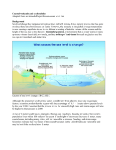 Coastal wetlands and sea level rise