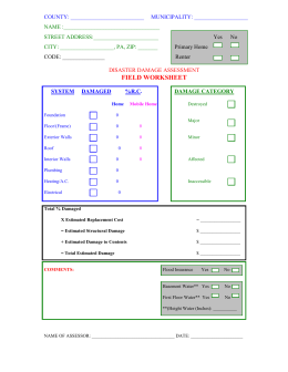Local Initial Damage Assessment Form Instructions