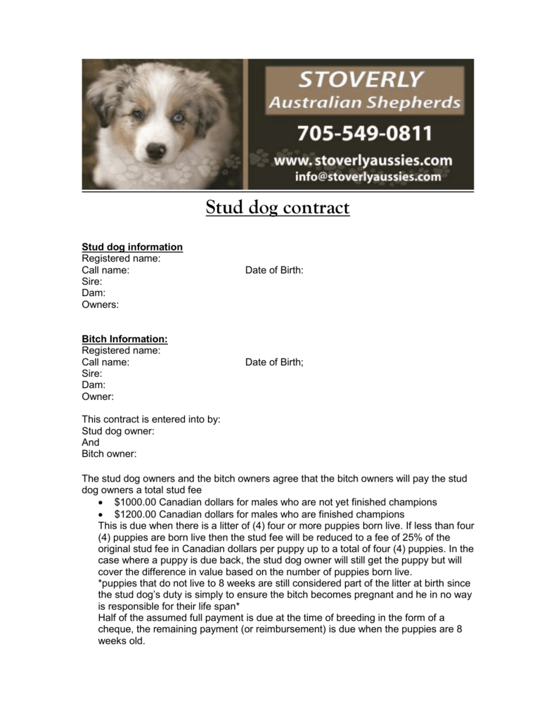 Stud Dog Contract