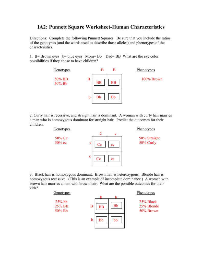 Monohybrid Punnett Square Practice Worksheet Answers