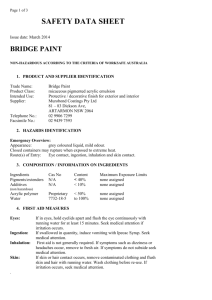 Bridge Paint MSDS