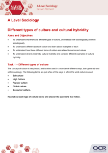 Different types of culture and cultural hybridity
