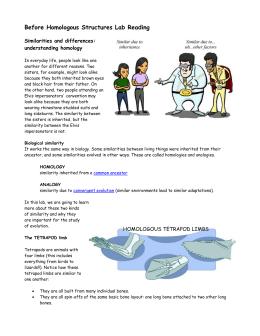 Genetics of organisms lab report