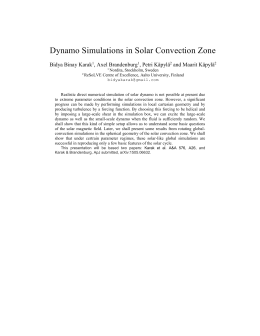 Dynamo Simulations in Solar Convection Zone