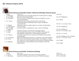 BSc. Research Projects (2012)