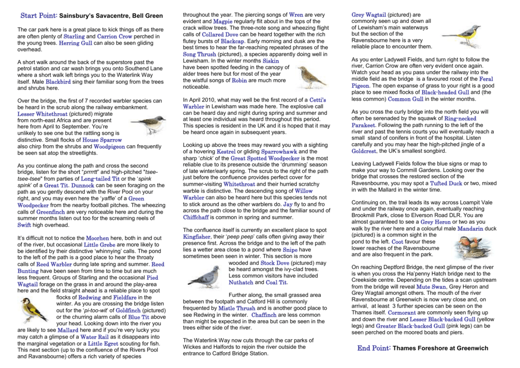 Waterlink Way Bird leaflet