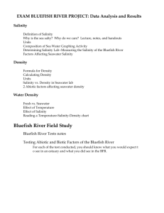 EXAM CHAPTER 4 + BLUEFISH RIVER PROJECT