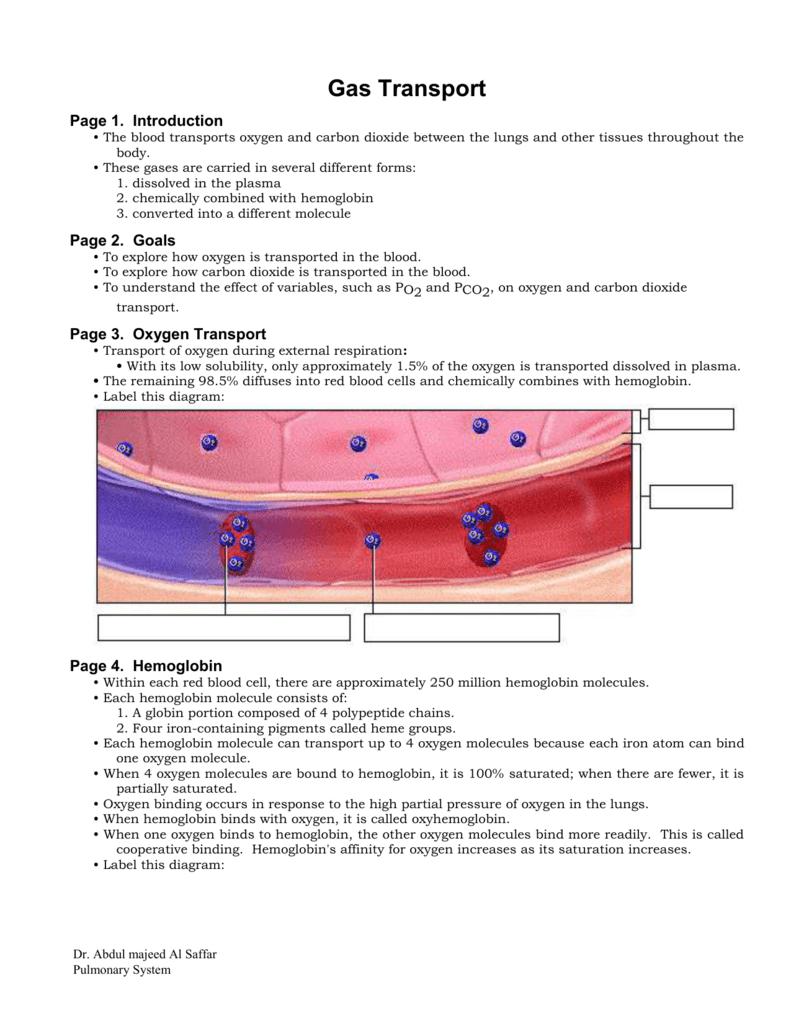 gas effect on body
