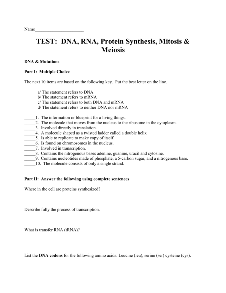 DNA RNA Protein Synthesis Mitosis & Meiosis Test