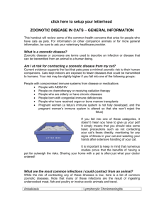 zoonotic disease in cats