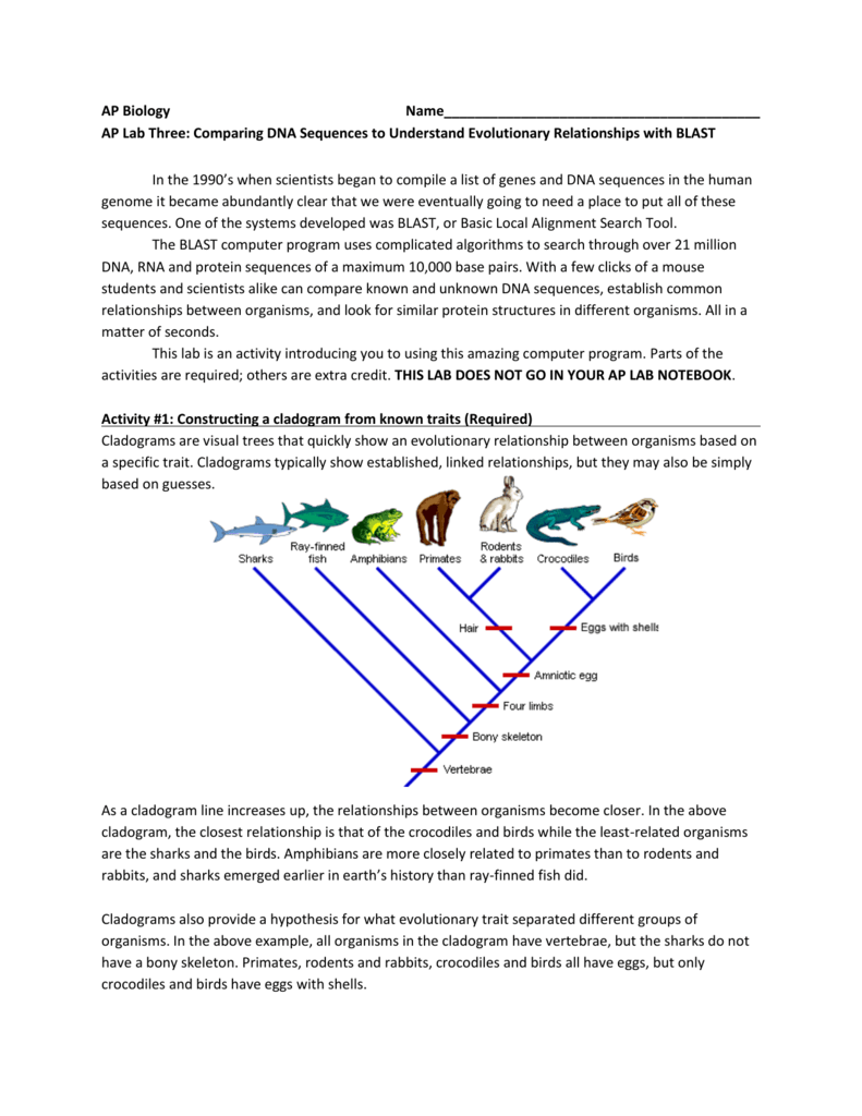 worksheet Making A Cladogram Worksheet Answers 007366124 1 7de268836ffaff6d38a99754c5c35031 png