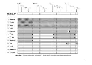 Comparison of genome sequence of PVY isolates with biological