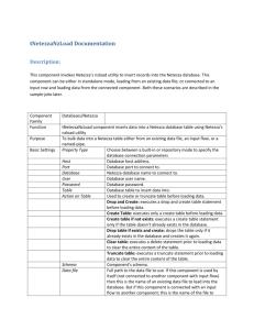 Netezza SQL Introduction