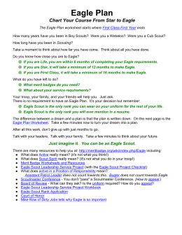 Eagle Plan Worksheet