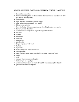 review sheet for taxonomy, protista, fungi & plant test