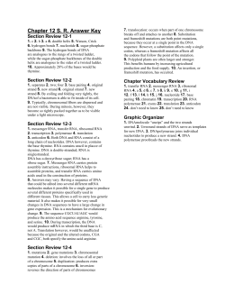 29 Chapter 12 Section 1 Dna The Genetic Material Worksheet ...